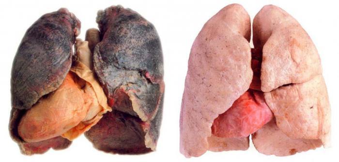 изменения в организме при отказе от курения