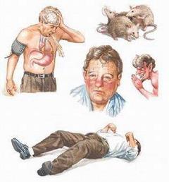 симптомы алкогольного делирия