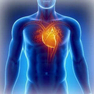 влияние гашиша на сердце
