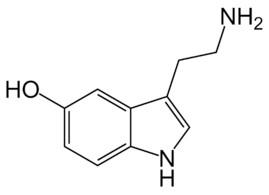 недостаток серотонина - причина алкоголизма