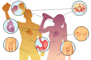 вред алкоголя организму человека